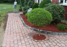 planting services in New Braintree, MA